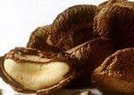 Масло бразильського горіха