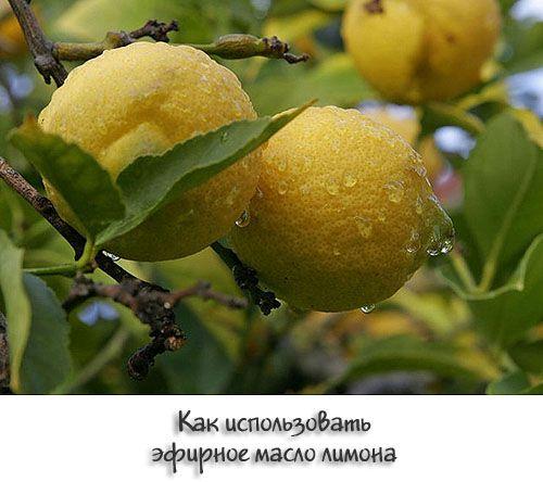 Ефірна олія лимона застосування