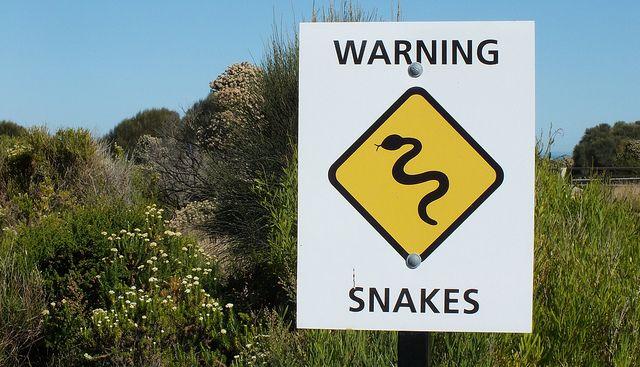 Як завоювати чоловіка-змію: бездоганність, надійність і пристрасть