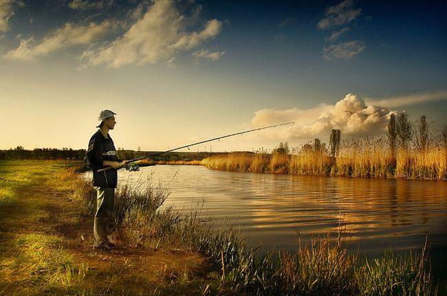 Рада рибалкам: використовуйте для лову риби живі насадки